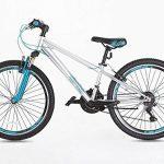 Junior Vélo de montagne 61cm Roues Shimano Gear 21Vérfiez à partir de 9ans Plus- de la marque image 1 produit